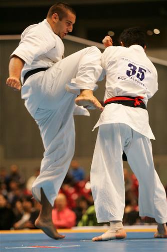 2011/11/4(金)~6(日)第10回オープントーナメント全世界空手道選手権大会